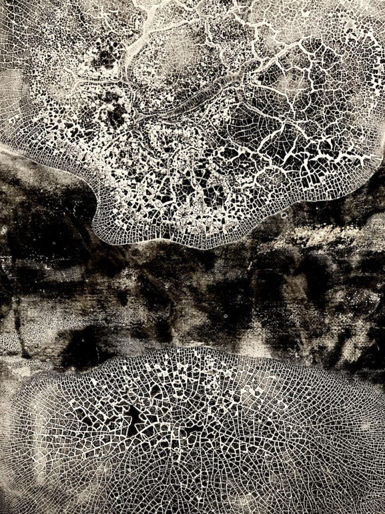 BARBARA BONVIN -Œuvres sur papier