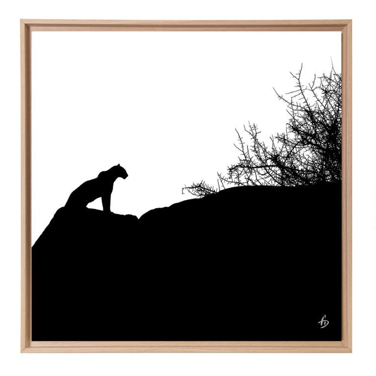Silhouette - Kenya