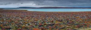 Samuel Bitton - Lac Gilsárlón / Lake Gilsárlón - Islande